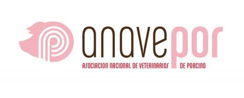 Diseño gráfico Zaragoza. Intermedio 2.0. Logotipo Anavepor. Diseño web Zaragoza.