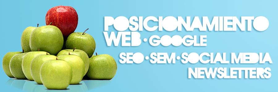 Posicionamiento web en Zaragoza. Intermedio 2.0.  Diseño web Zaragoza. Google.